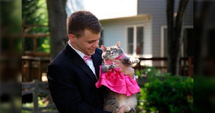 La gata lució un vestido rosa para ir en sintonía con su compañero de baile