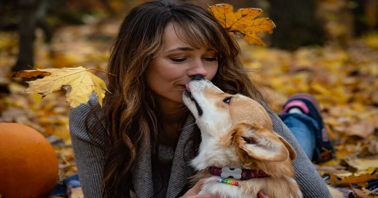 Besar a tu mascota podría causarte cáncer estomacal