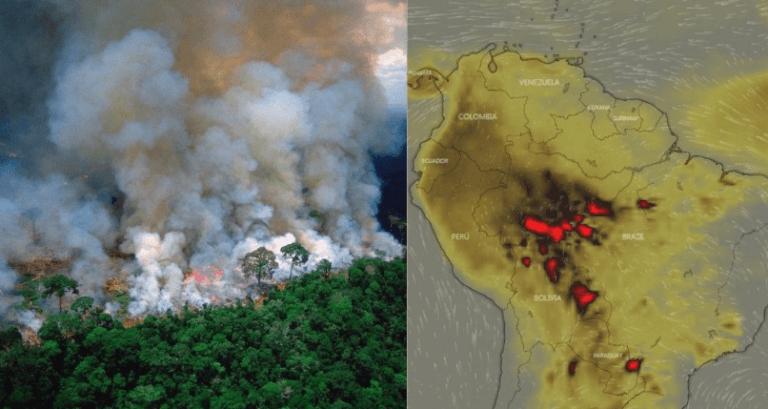 Se quemó Notre Dame y el mundo lloró, se quema el Amazonas y nadie dice nada